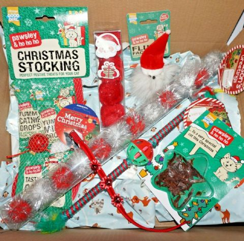 THE ULTIMATE CHRISTMAS CAT HAMPER BOX WITH FESTIVE TOYS STOCKING CARD & COLLAR